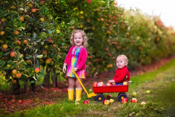 Kinder erlernen Selbstständigkeit | © panthermedia.net /FamVeldman